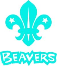 Beaver_CMYK_blue_stack